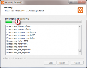 Xampp_tutorial_xampp_for_windows_installation_wizard_installation_progress